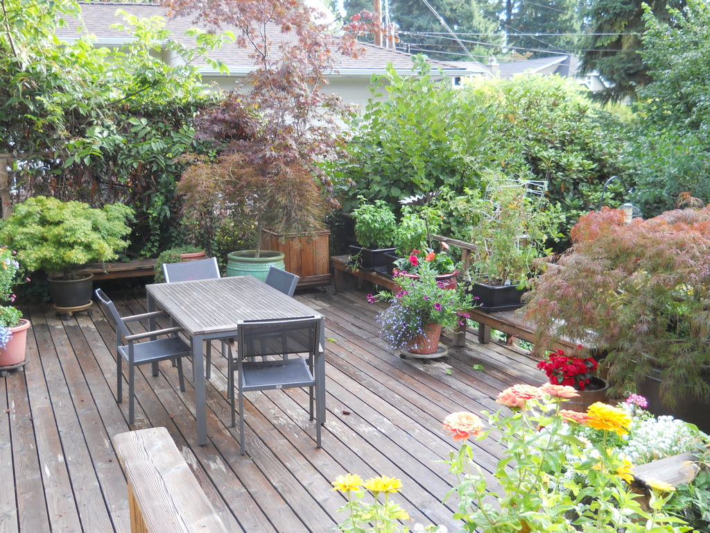 Our deck where we eat in the summer