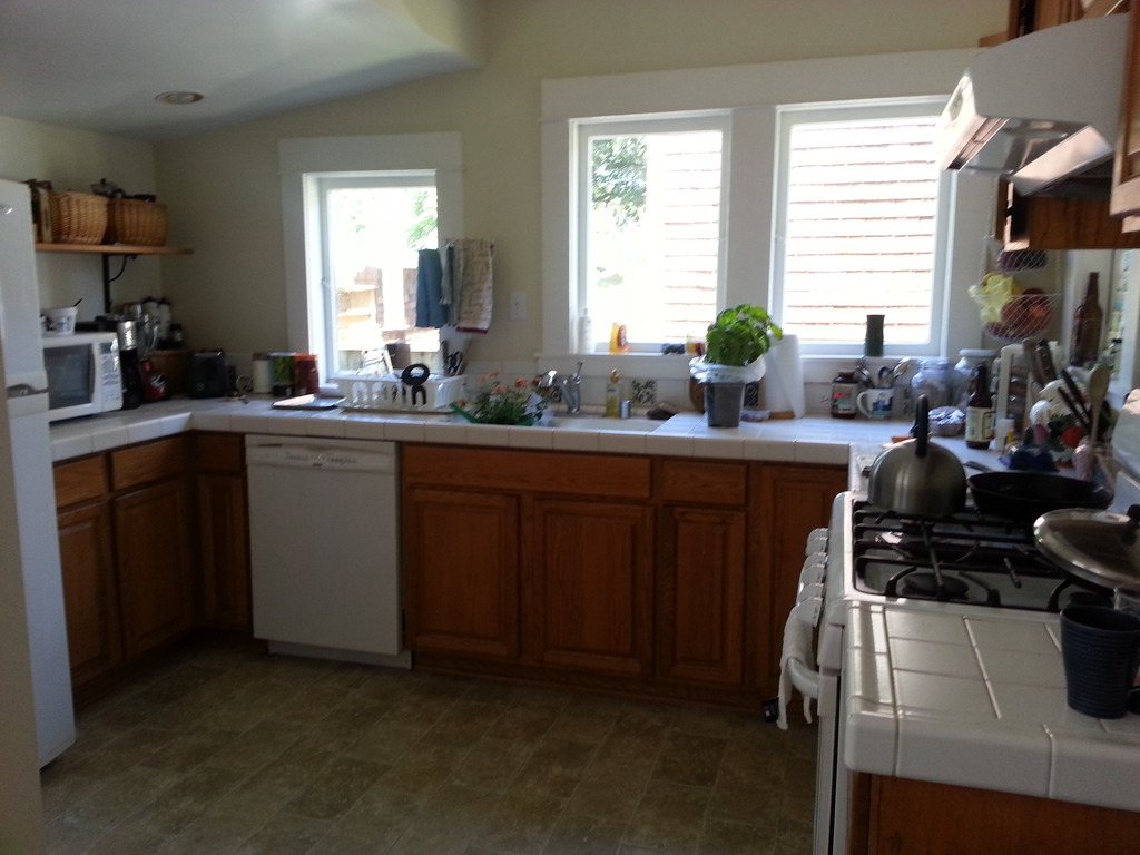 Kitchen with gas stove, microwave, dishwasher, fridge