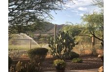 Home in Arizona Sonoran Desert - Phoenix, Arizona
