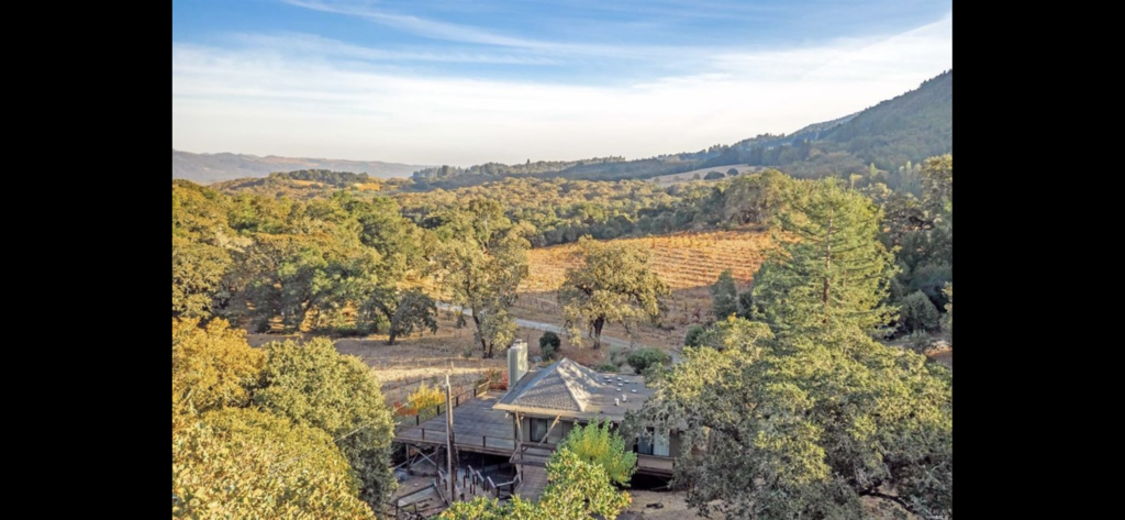 Aerial view of the property, with the neighbor's Zinfandel vineyard beyond