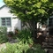 Front of our house faces west and has a lovely maple tree for shade.