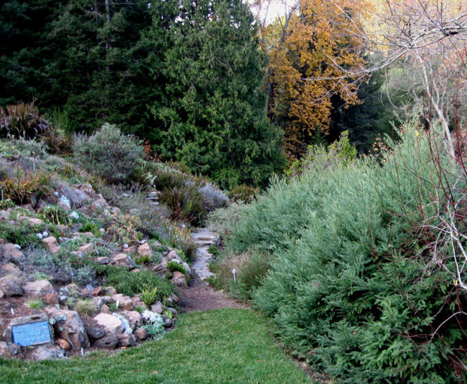 Botanical Garden in Tilden Park has flora from all parts of the state