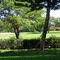 Waikoloa Village maintains a golf course that is right behind Elima Lani, in fact, near the unit's doorstep.