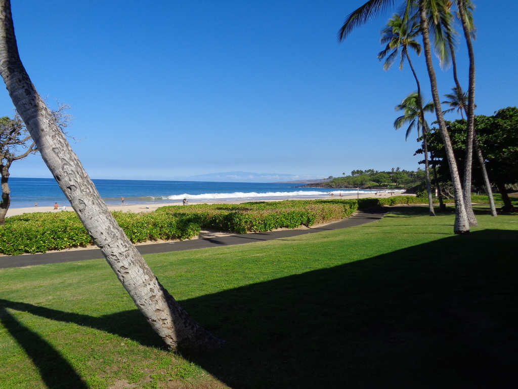 View of Hapuna beach