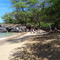 Puako Beach, one of several within 15 minute drive of home.  Enjoy the sun or the shady keawe trees near the shore.