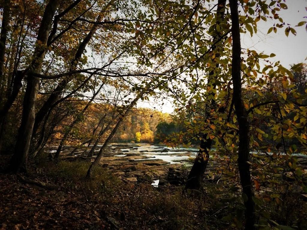 Chattahoochee River in Atlanta