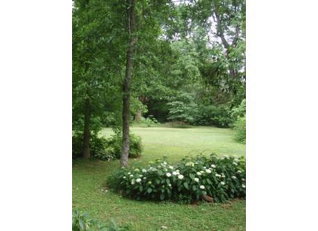 Atlanta - Back Garden Summer