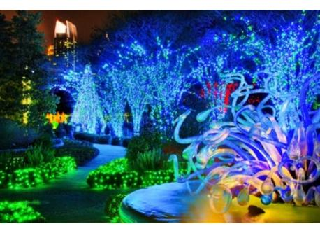 Botanical Garden Holiday Lights