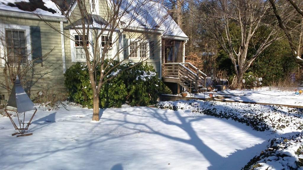 Atlanta - Front yard - a rare snowfall!