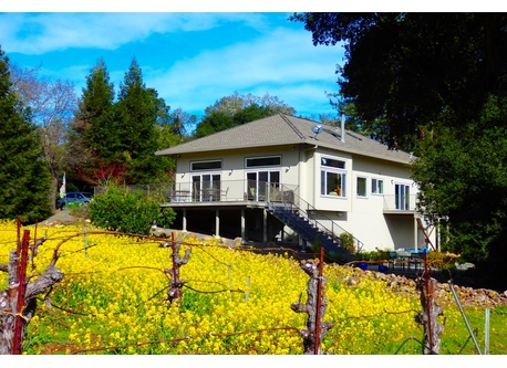 house in the vineyard