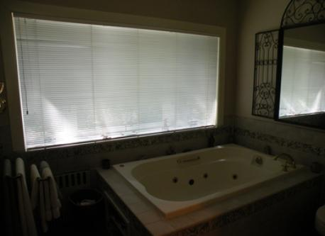 Jacuzzi tub in master bath - overlooking private back yard