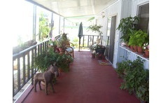 Balcony looking out to patio/umbrella table & bar-b-que