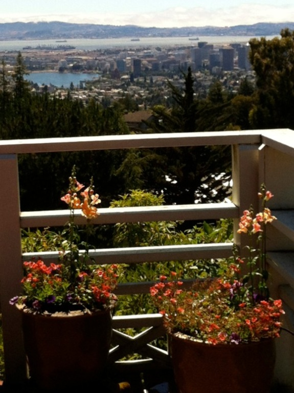 deck & view to Lake Merritt, Oakland