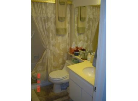 Downstairs Bathroom with