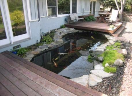 Koi pond (requires no maintenance).