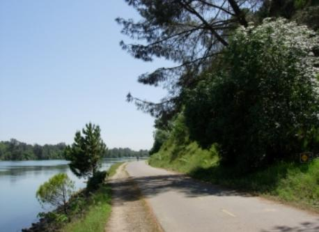 Bike trail below bluff along Lake Natorma