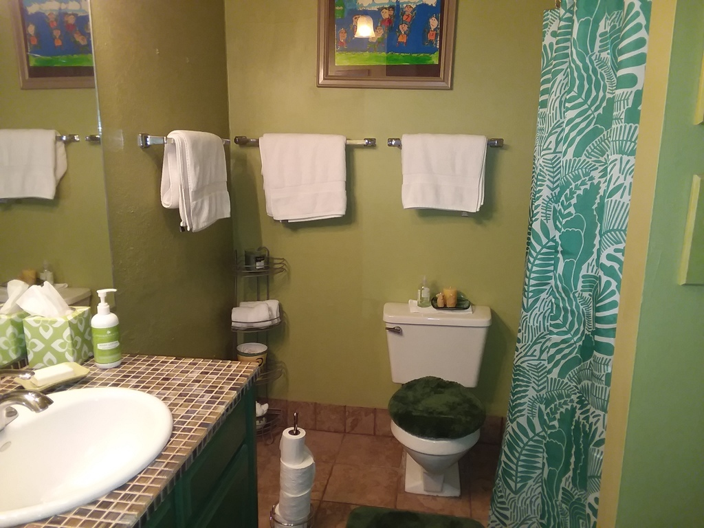 Master bathroom -- shower & tub