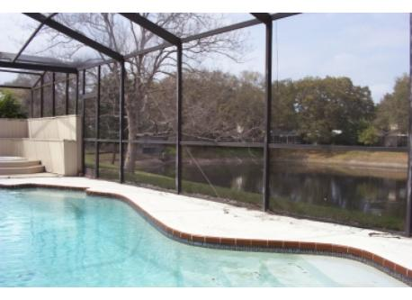 private pool and community pond in background