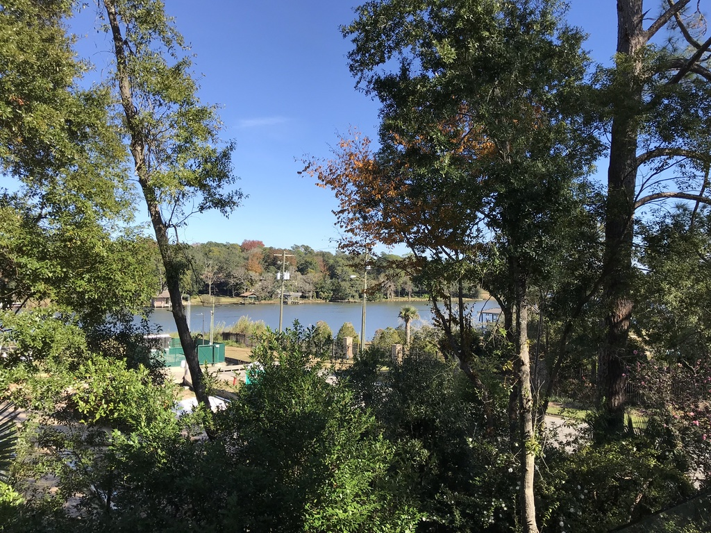 View over the Bayou from upstairs deck