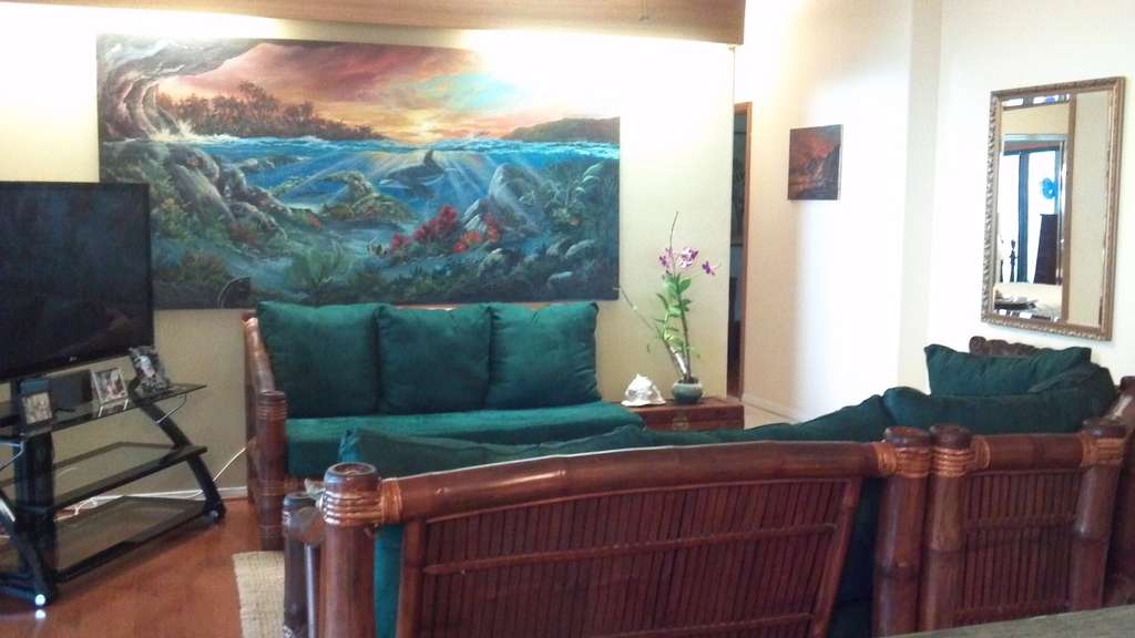 Primary residence in Capt. Cook livingroom