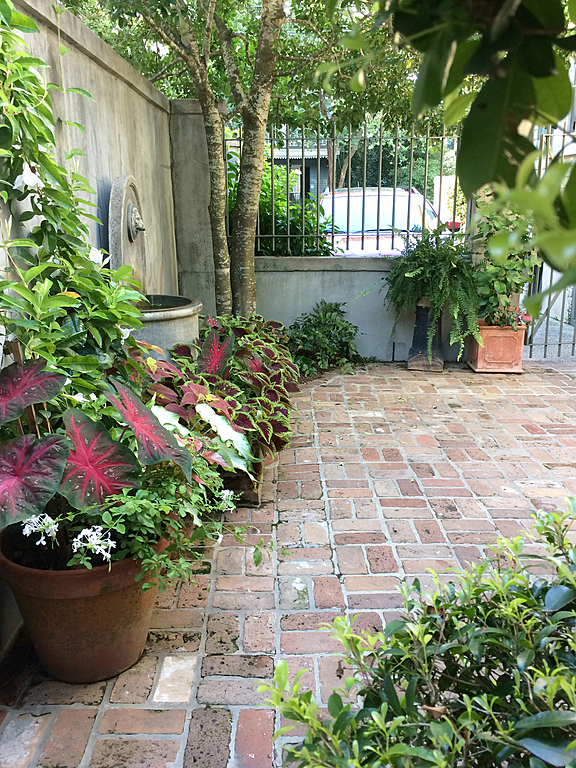 Entrance to Private Patio - New Orleans