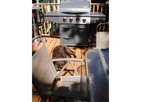 """Deck- kitchen level. (Now has outdoor fire-pit, deck heater and """"GreenEgg"""" BBQ. Updated photos coming...)"""