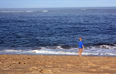 Atlantic Ocean; Plum Island, Newburyport, MA