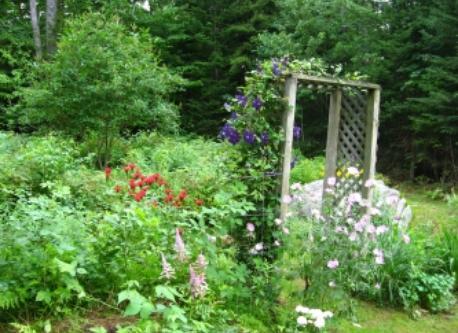 A small part of the garden