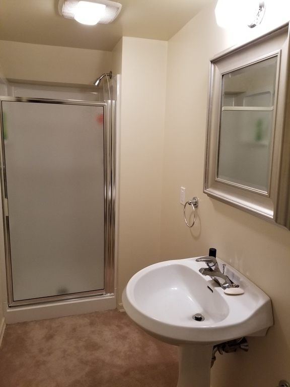 Bathroom in basement.