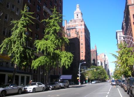 View up 5th Avenue