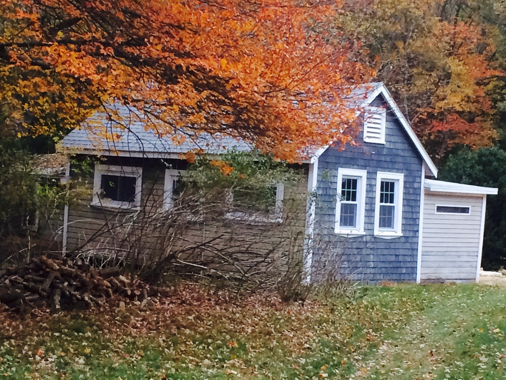 Fall view, Tiny cottage out back, separate from main house