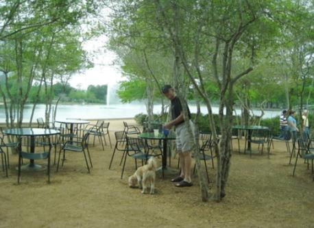 outdoor cafe on the lake at Hermann Park across the street from our flat