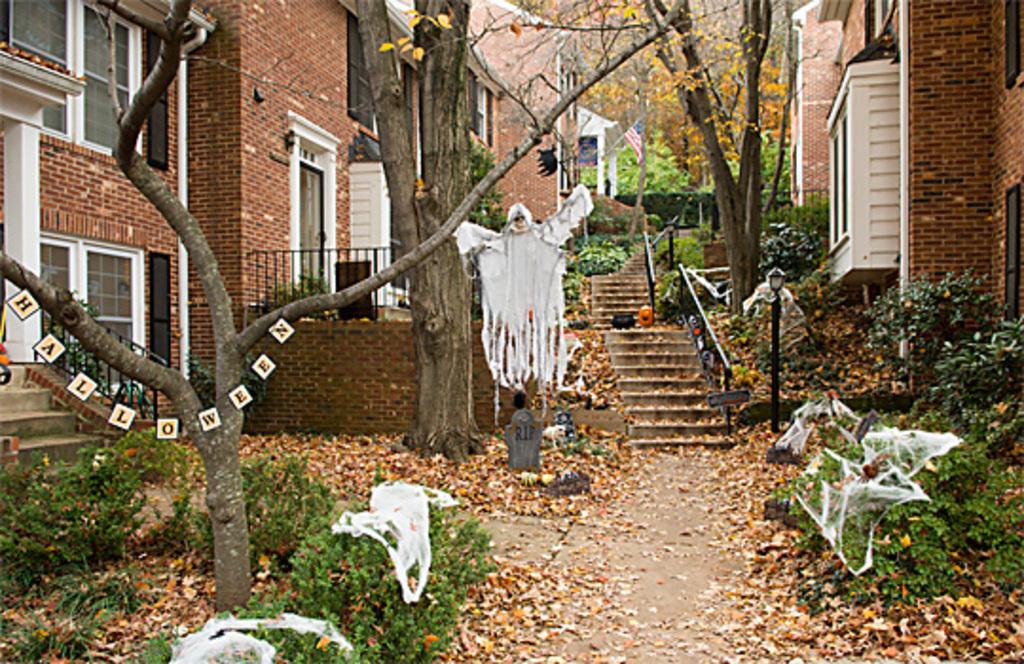 Halloween in my courtyard