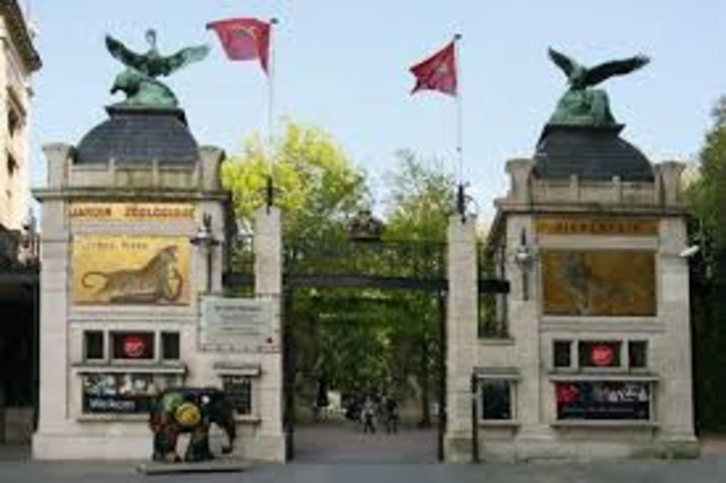 Antique zoo Antwerp