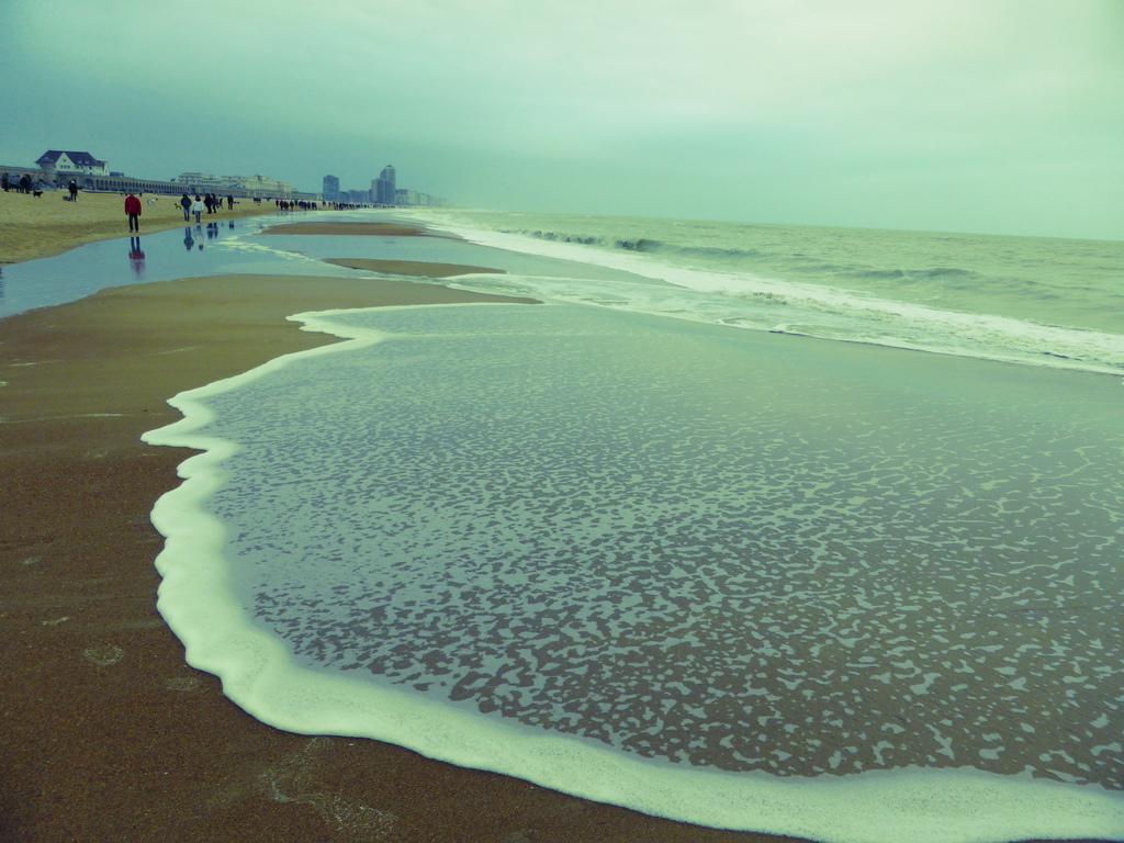 Coast at Ostend / 1h15min. drive