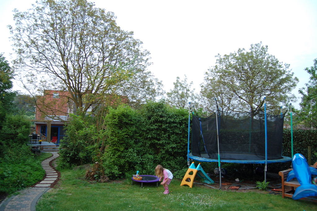 Second part of the garden, trampoline