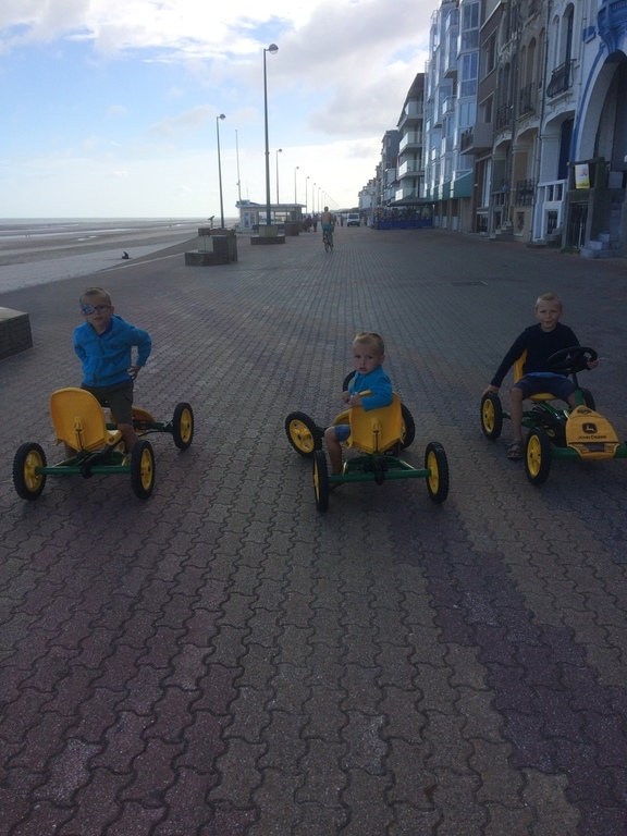 Three gocarts are available