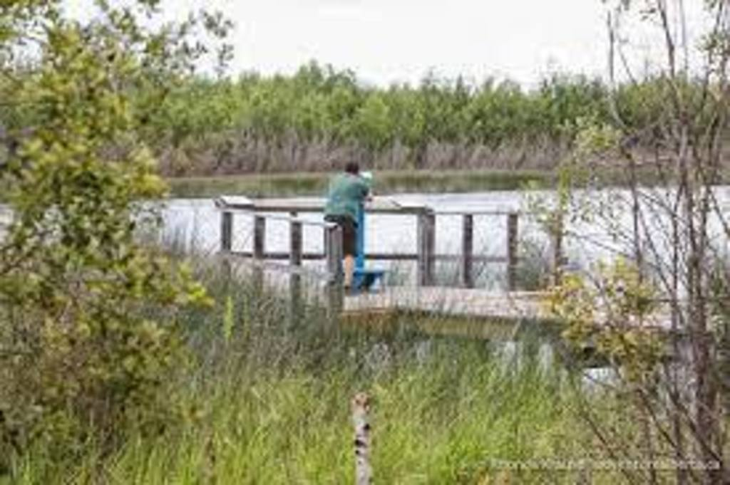 Several Nature sanctuaries provide beautiful walks and birdwatching opportunities