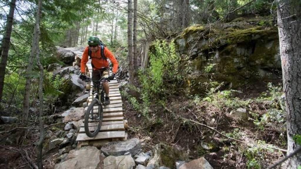 Mountain biking trails - all levels.