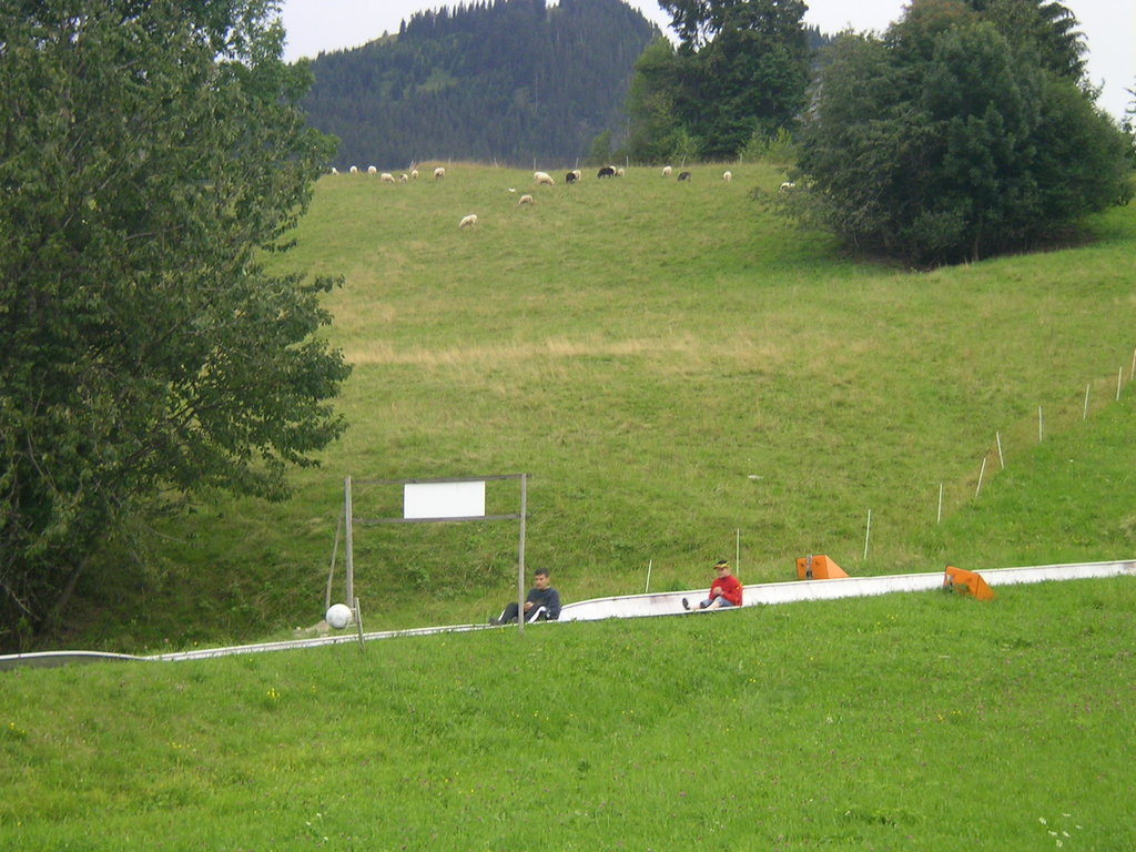 Summer toboggan run in Nesselwang