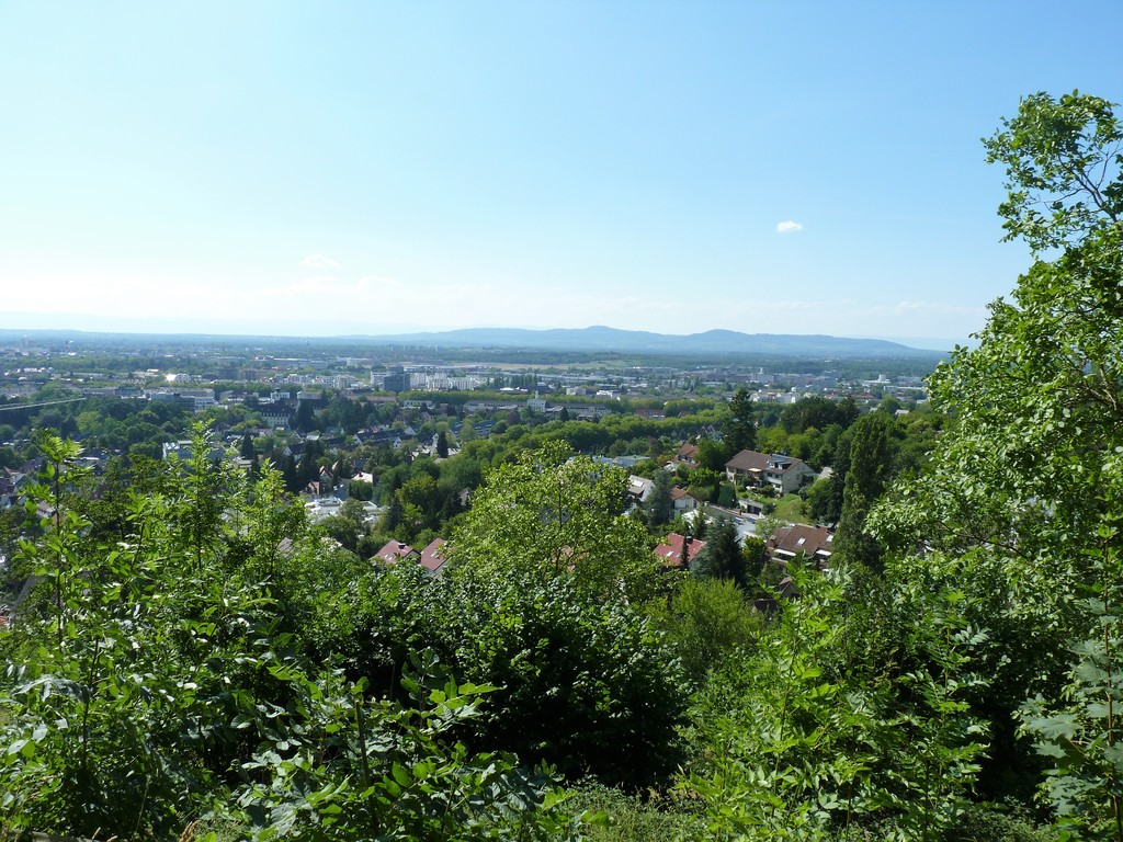 In the background, view of Kaiserstuhl (557m, close to the French border)