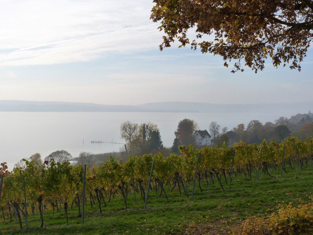 Lake Constance with the Alps in the haze