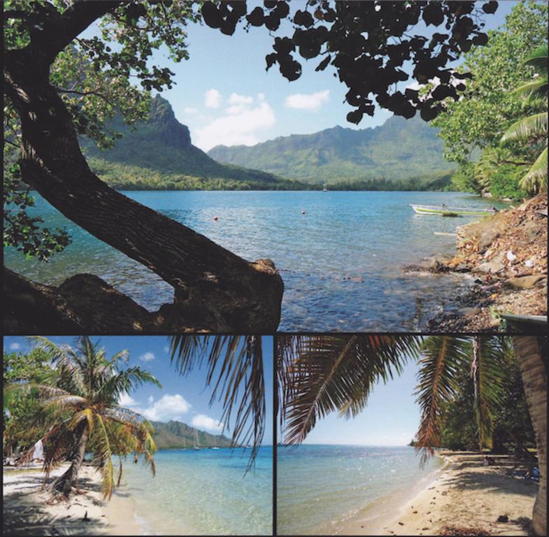 Moorea, la baie d'Opunohu et la plage de Mareto, Polynésie Française 2011