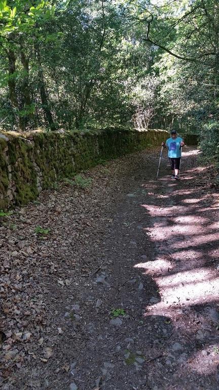 Roman Wall Randonee