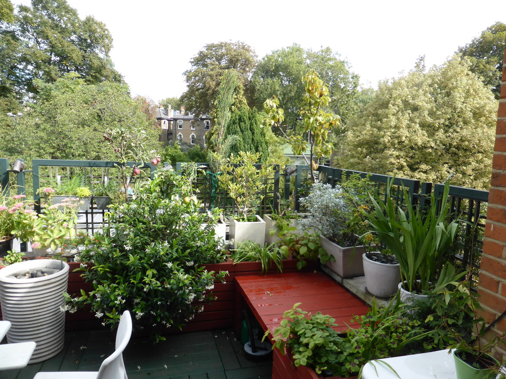 Our roof terrace