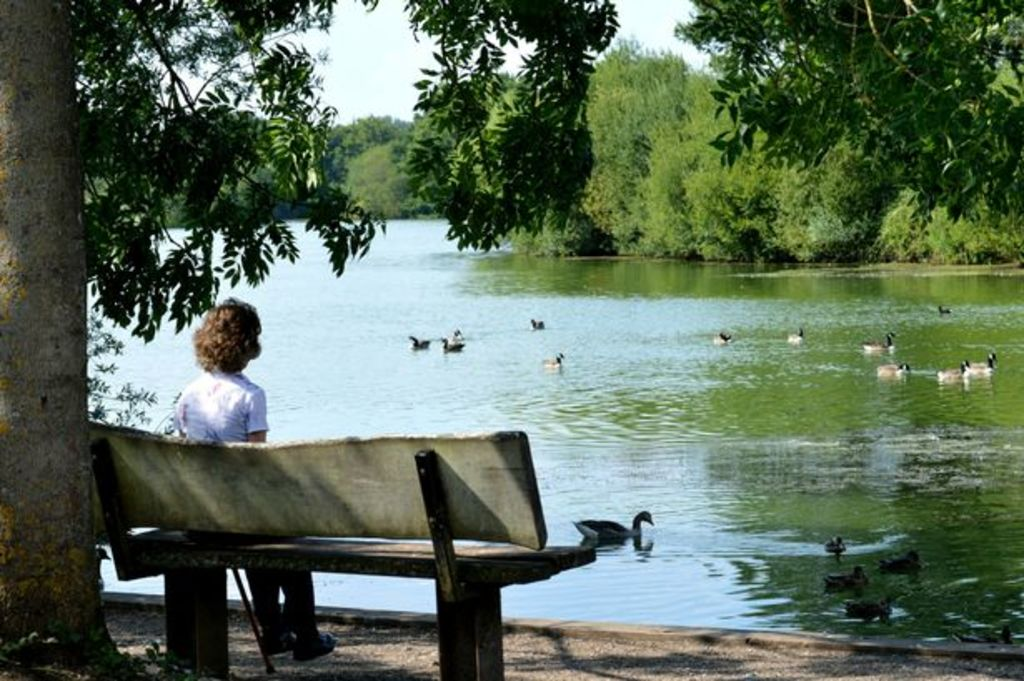 Dinton Pastures 1 - lake view - in summer you can hire canoes/rowing boats/pedaloes