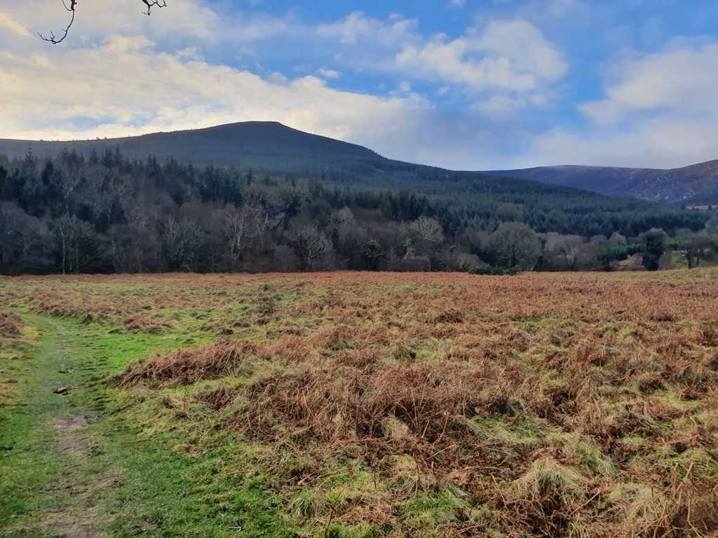 Maulin Mountain, from the Wicklow Way