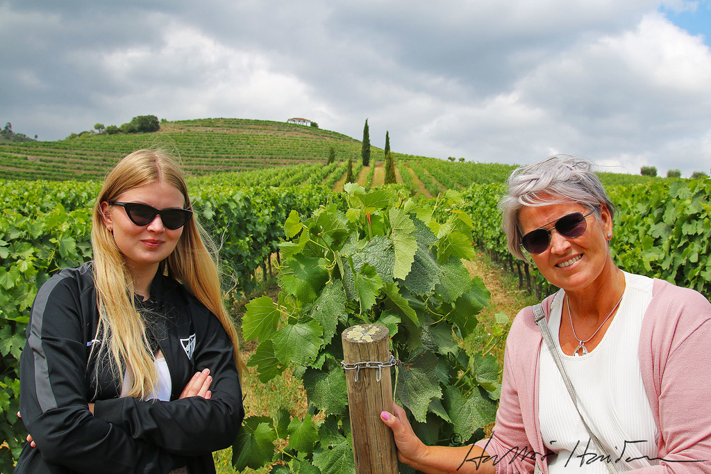 Elín and Lea at vineyard in Dourovallley, Portugal, last summer.