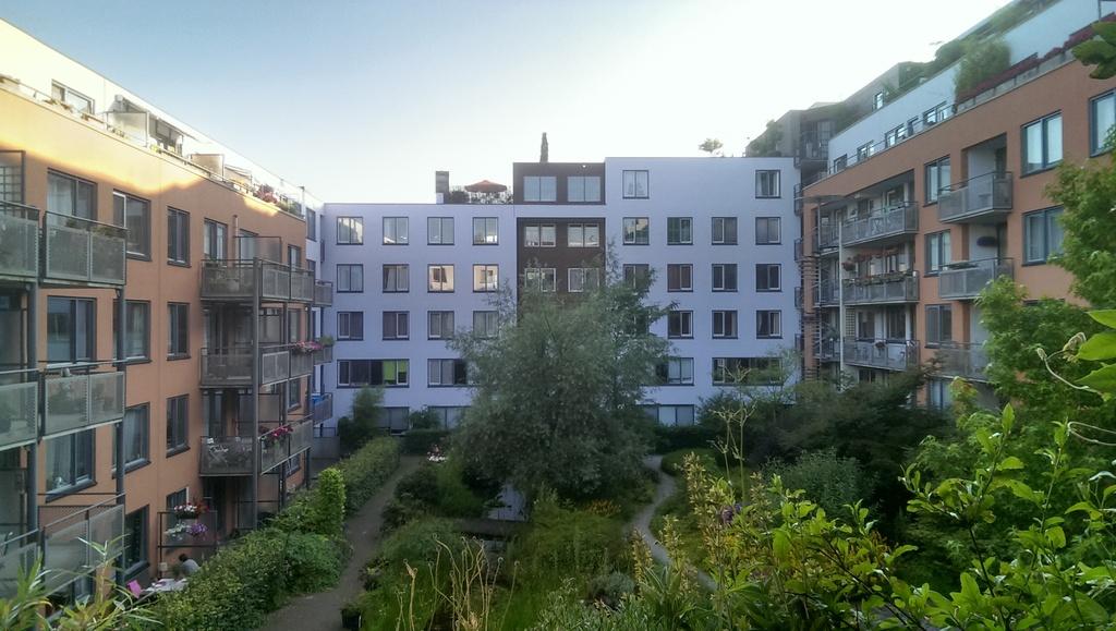 Our communal garden