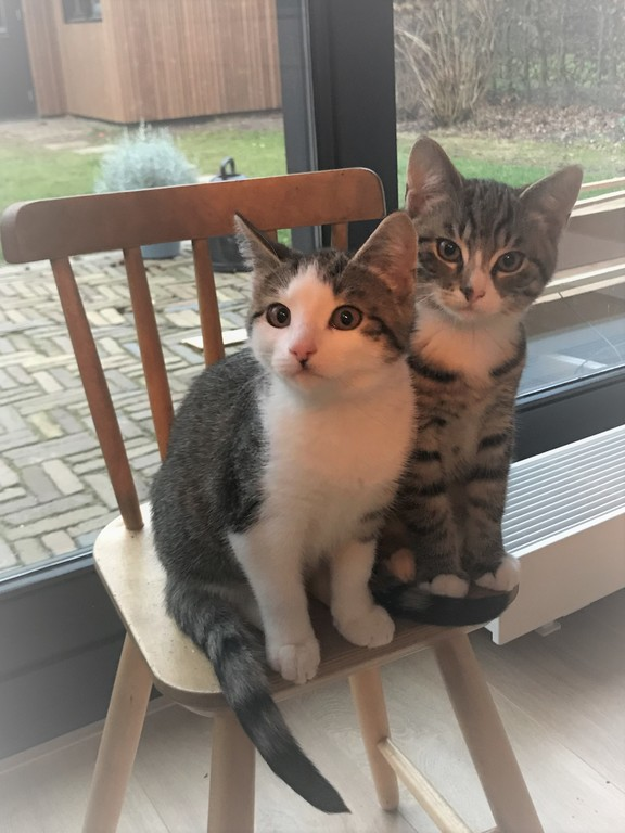 Brother and sister, Joep and Jet